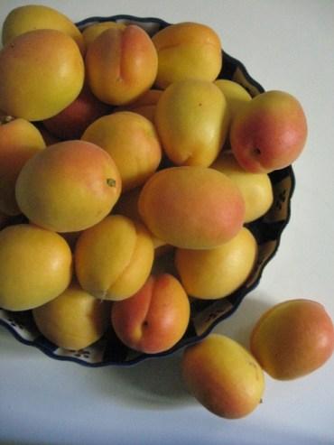 RECIPE: Apricot Chutney