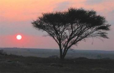 Dropouts Threaten Viability of Israel's Ashelim Solar Tender