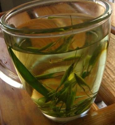 Recipe: Reap Your Wild Oats To Make Nourishing Oatstraw Tea