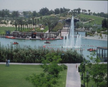 Dubai Municipality Plans to Expand Green Spaces