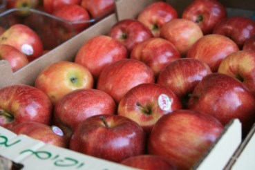 Israel Scraps Tax on Fresh Produce