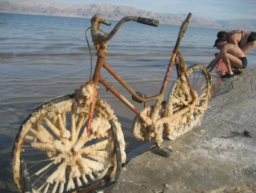 """Petrified Bike"" Metaphor for a Shrinking Dead Sea?"