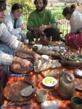 Subsidized Sustainable Food Tour in Israel in November
