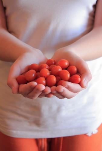 The Organic Food Debate Rages On