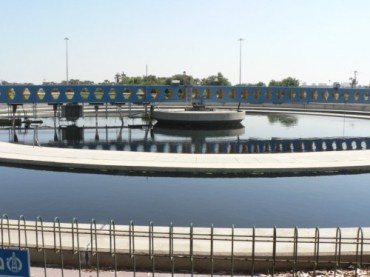 Solutions to Sewage Sludge – energy and wetlands