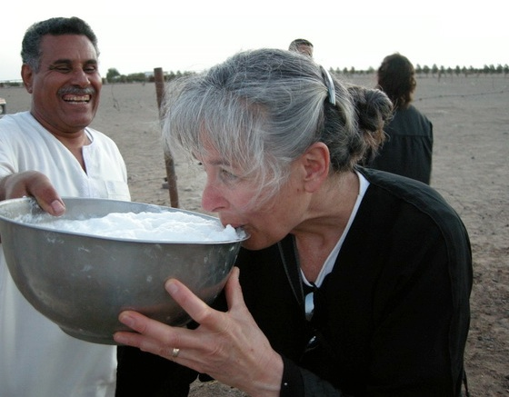 drink camel milk green photo