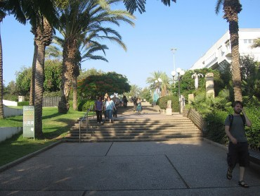 Academic Research and Environmental Policy Conference at Tel Aviv University Tomorrow