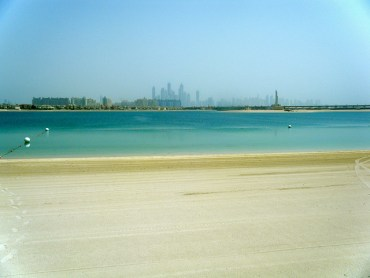 Kuwaiti Sharks, Ecosystems and Exxon