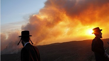 Israel Carmel Fire – Taking Stock of How It Happened