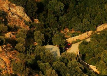 Jordanian Environmentalists to Fight Ajloun Forest Construction