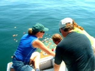 sea burial eco green bin laden