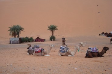 Moroccan Poor Leapfrog Fossil Fuels – Switch on the Sun