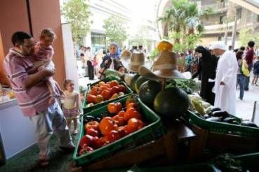 Masdar's Organic Market and Street Fair Re-Opens