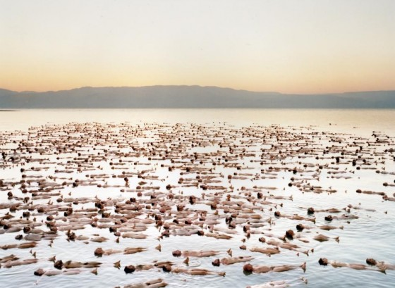 Israel Chemicals Will Pay for Southern Dead Sea Damage