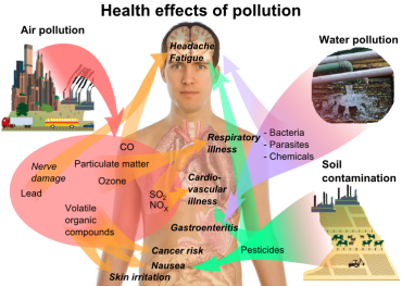 Pollution: What Autism, ADD, and Dyslexia Have in Common