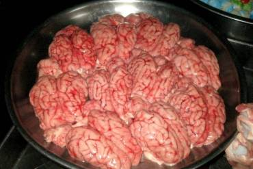 420 Pound Cow Brain Seizure in Cairo Deprives Egyptians of Tasty Dish