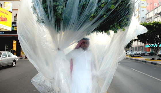 Saudi Artist Sucks Oxygen From a Plastic-Wrapped Tree