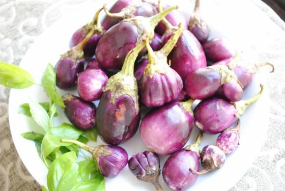 image-baby-eggplants