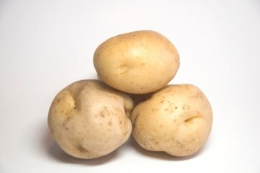 Saudi Potato Battery Could Be Commercially Available in One Year!