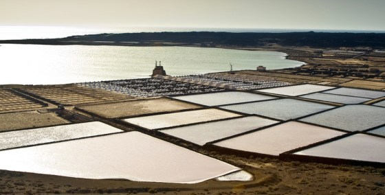 desalination brine mining minerals