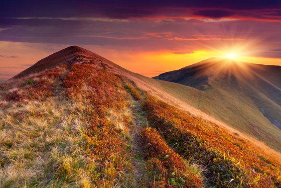 5 Ways Yom Kippur Can Green The World