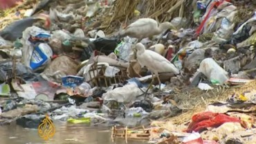 Egypt's Filthy Canals Are Breeding Disease and Discontent