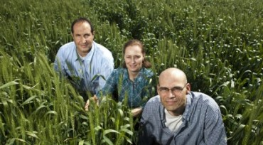 "Morflora's Plant ""Vaccine"" Boosts Food Production Without Using GMOs"
