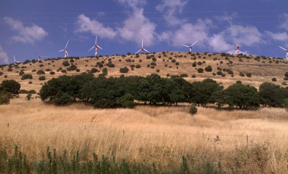 wind energy turbines in the golan heighst by Karin Kloosterman candycane