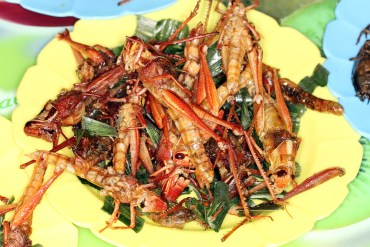 Feasting On Locusts – A Recipe From Moshe Basson's Kitchen