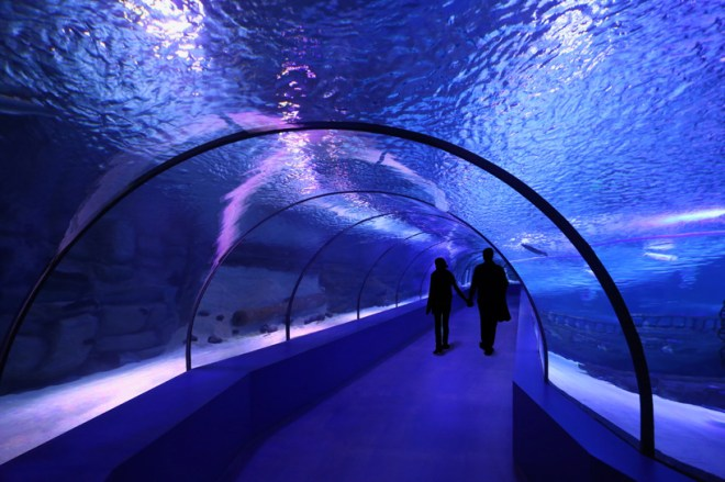 Antalya Aquarium, Bahadir Kul Architects, Turkey, Turkish Riviera, design, daylighting, Mediterranean Sea, scuba diving, marine life, Turkey