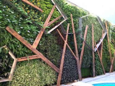 Cairo is growing green with living walls on the up!