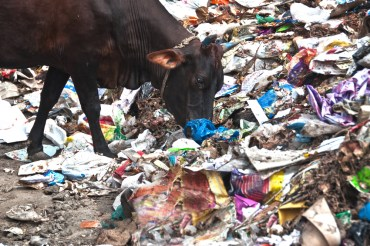 Jordan bans plastic bags, joining Kuwait, Qatar and the UAE
