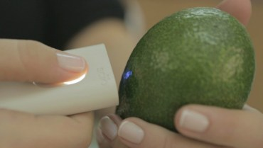 Tiny SCiO scanner reveals calories and chemistry in everything!