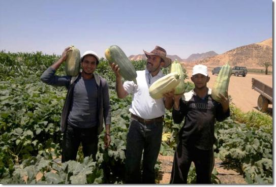 Wadi Rum farmers with squash