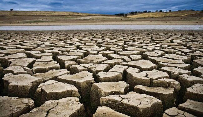 البنك الدولي يتعهد ب16 مليار دولار لمكافحة تغيير المناخ