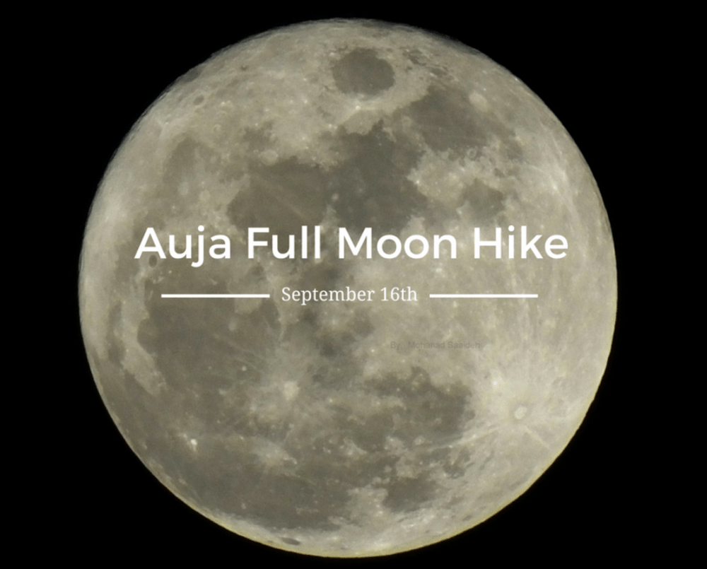 Full moon hike with consciousness about water in Auja