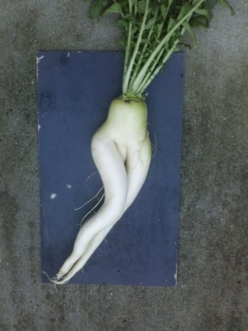 inappropriate vegetables