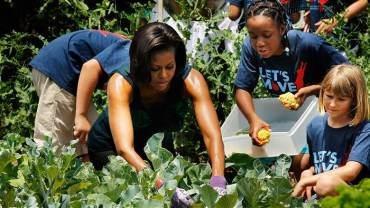 The White House Garden gets support to endure from Burpee seed company