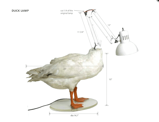 sebastian errazuriz, chicken lamp, taxidermy lamps, duck lamp, stuffed animals as lamps, design, radical recycling, adaptive reuse