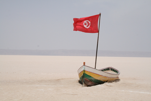 Tunisia's environmental progress slides back 25 years