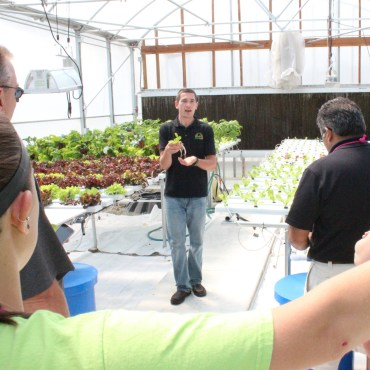 The Cropking family makes it hydroponics back to school time