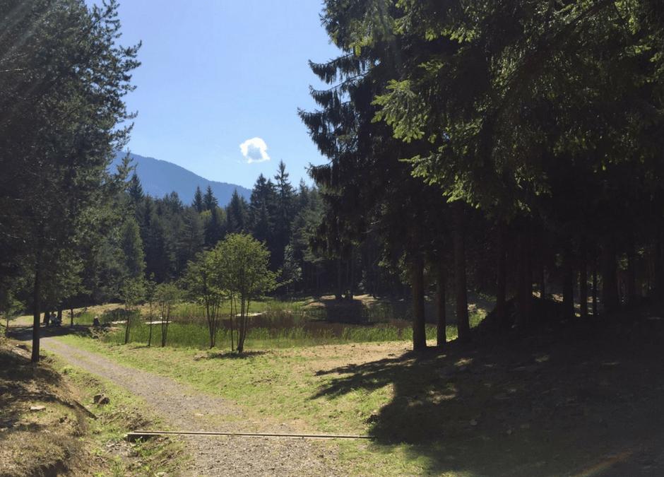 Sentiero Bedolpian – Bellavista – Lago delle Rane