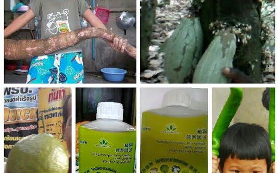 fertilizer green world