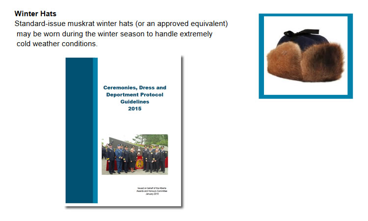 "The RCMP Ceremonies, Dress and Deportment Protocol Guidelines 2015 states, ""Standard issue muskrat winter hats (or an approved equivalent) may be worn during the winter season to handle extremely cold weather conditions."""
