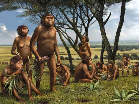 Early hominids had body hair.