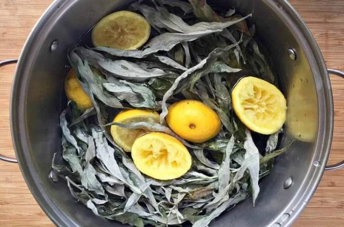 mugwort lemon