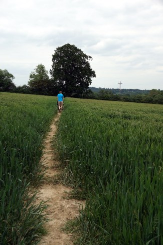 01-Hever_to_Leigh-017