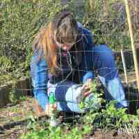 Garden jobs in March