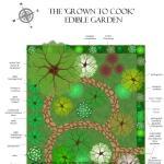 Onze tuin ontwerp 1 uitgelichte afb
