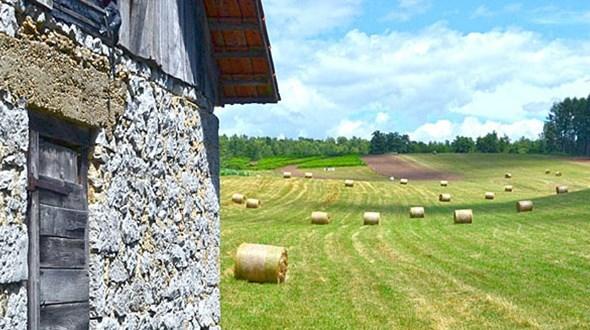 poljoprivreda-061316